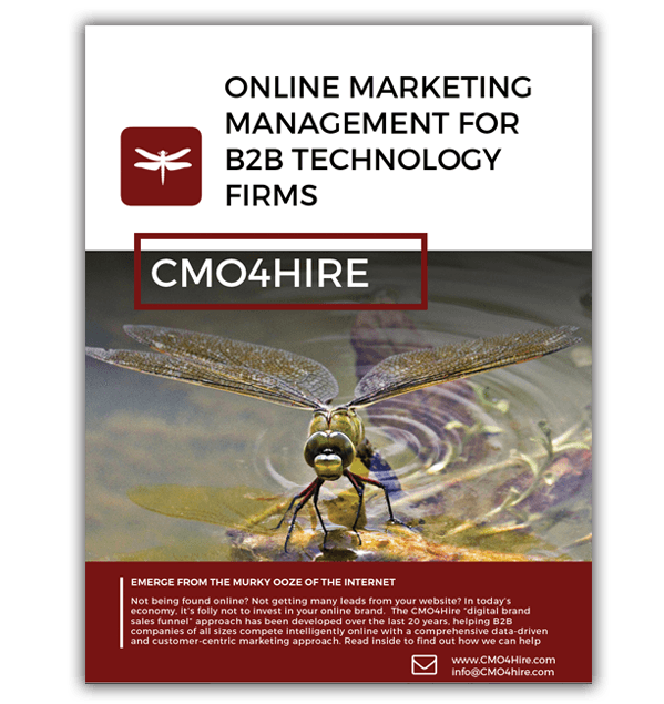 Online Marketing Management for B2B Technology Firms eBook CMO4Hire Stephdokin